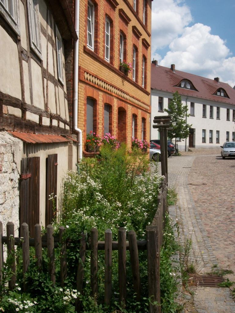 Vorgarten 2011